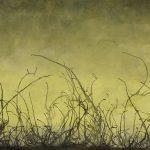 Horizonte 26, Acrílico sobre tela, 67x188 cm, 2018